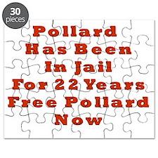 Pollard 22 Puzzle