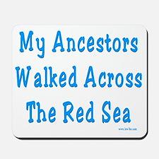 Red Sea2 Mousepad