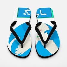 Hebrew bird Flip Flops