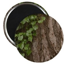 Rosh Hashanah Tree Of Life Magnet