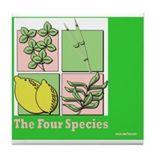 Te Four Species Succah Poster Tile Coaster