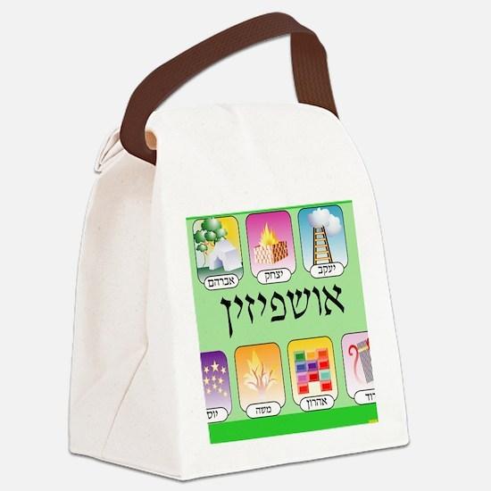 Ashpezin Poster Canvas Lunch Bag