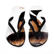 3-Baruch Oybma 2 Flip Flops