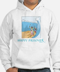 HAPPY PASSOVER CARD 1 Hoodie