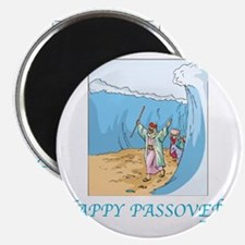 HAPPY PASSOVER CARD 1 Magnet