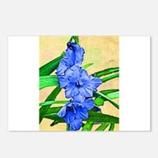 Painted Gladiola Postcards (Package of 8)