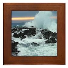 Snapper 4 - Framed Tile