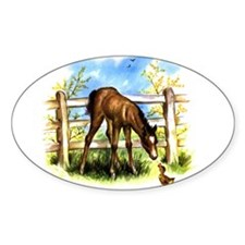 FOAL PLAY Oval Decal