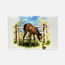 FOAL PLAY Rectangle Magnet