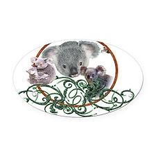 koala Bear Oval Car Magnet