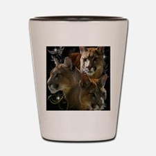 Cougars Shot Glass