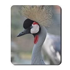 Africian Crowned Crane Mousepad