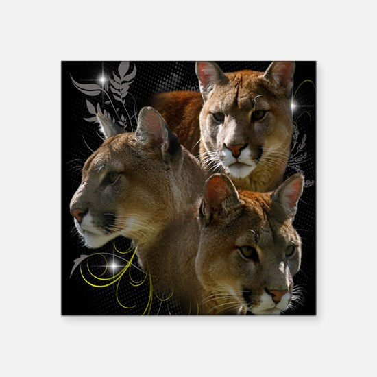"Cougar Square Sticker 3"" x 3"""