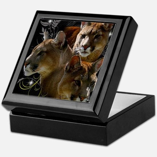 Cougar Keepsake Box