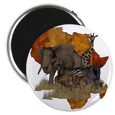Safari Magnet