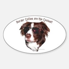 """Border Collie Cool"" Oval Decal"