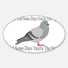 Youre The Pigeon Decal