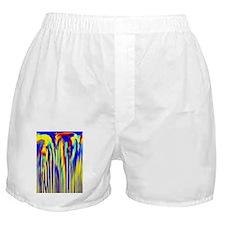 rainbowfalls9x12 Boxer Shorts