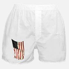 usflagwcverttop Boxer Shorts