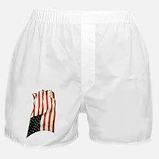 usflagwcvert Boxer Shorts