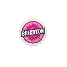 Brighton Ski Resort Utah Pink Mini Button