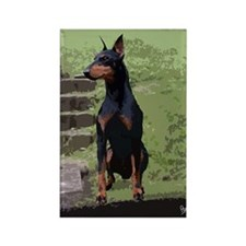 Mollys Manchester Terrier Rectangle Magnet