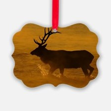Bull Elk at Sunrise Ornament