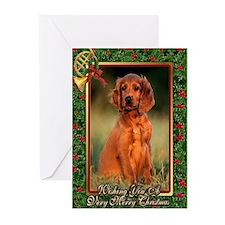 Irish Setter Dog Christmas Greeting Cards (Pk of 1