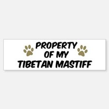 Tibetan Mastiff: Property of Bumper Bumper Bumper Sticker