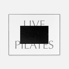 LIVE-LOVE-pilates-OPT-GRAY Picture Frame
