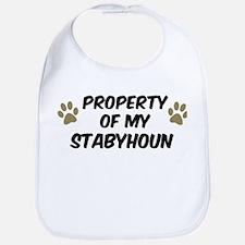 Stabyhoun: Property of Bib