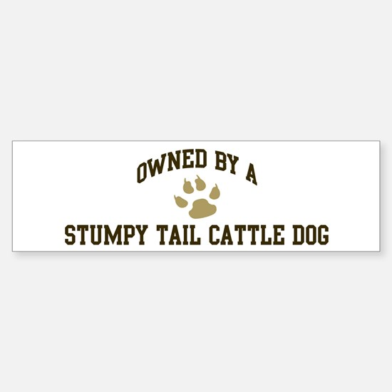 Stumpy Tail Cattle Dog: Owned Bumper Bumper Bumper Sticker