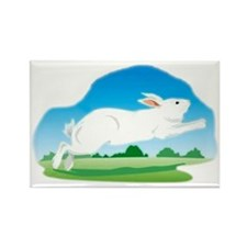 Leaping Rabbit in the Field Rectangle Magnet