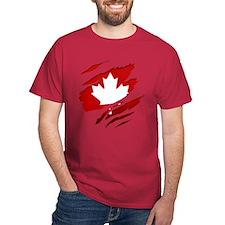Unique Toronto hockey T-Shirt