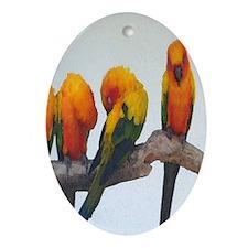 Sun Conure Oval Ornament