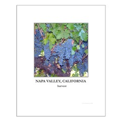 Napa Valley, harvest, Posters