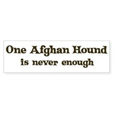 One Afghan Hound Bumper Bumper Sticker