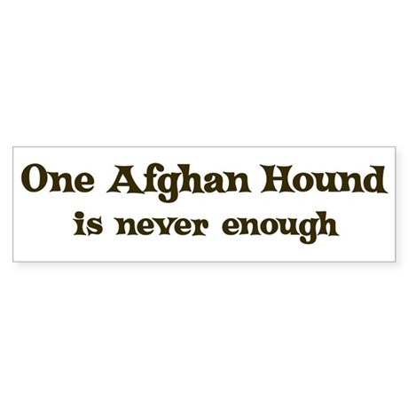 One Afghan Hound Bumper Sticker