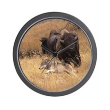 Bull Bison, Female, & Wolf Wall Clock