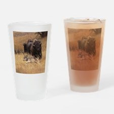 Bull Bison, Female, & Wolf Drinking Glass