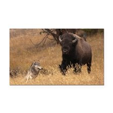 Bull Bison & Wolf Rectangle Car Magnet