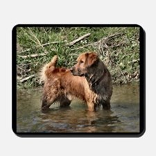 Golden Retriever Lovers Gifts Mousepad