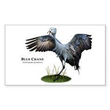 Blue Crane Decal