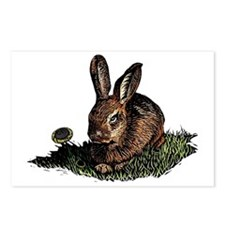 Colored Etching of Rabbit Postcards (Package of 8)