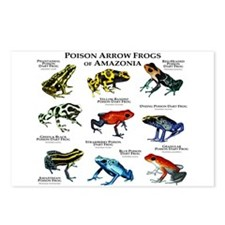 Poison Dart Frogs of Amazonia Postcards (Package o