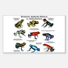 Poison Dart Frogs of Amazonia Decal