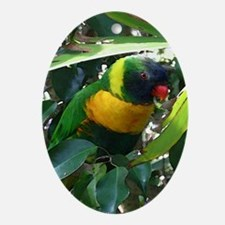 Lory Oval Ornament
