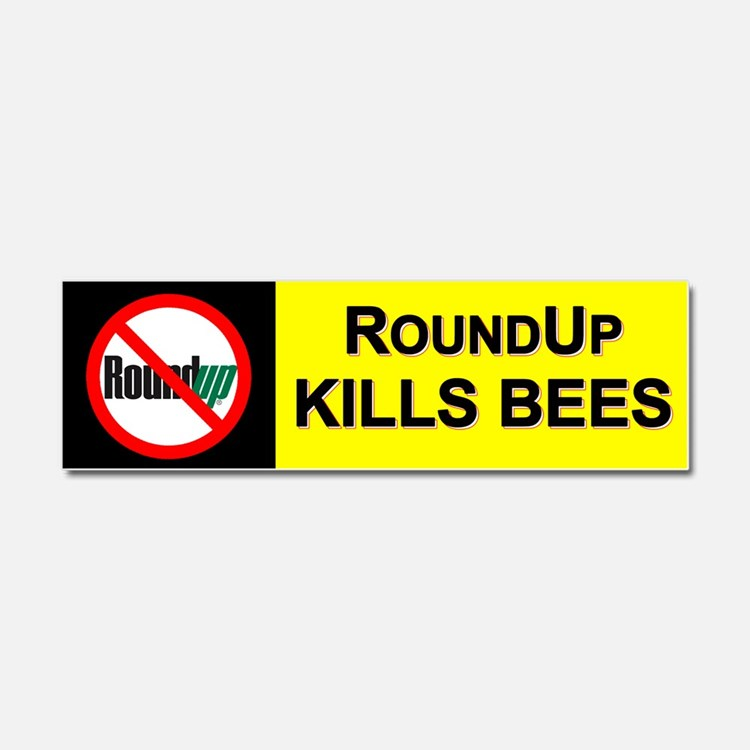 No RoundUp - RoundUp Kills Bees car magnet