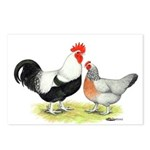 Dorking Chickens Postcards (Package of 8)