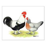 Dorking Chickens Small Poster